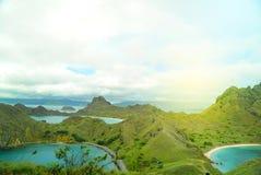 Padar Island Komodo Dragon stock image