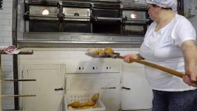 Padaria italiana tradicional Um padeiro fêmea toma o pão quente fora do forno video estoque