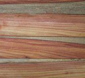 Padauk wood grain Stock Images
