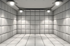 Free Padded Cell Royalty Free Stock Images - 64868959
