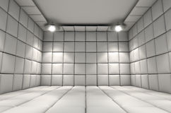 Padded Cell Royalty Free Stock Photos