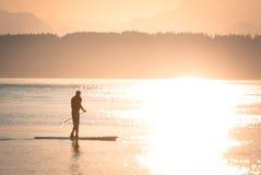 Paddel-Einstieg-Schattenbild bei Sonnenuntergang Lizenzfreies Stockfoto