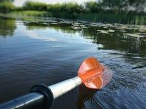 Paddel im Wasser Stockfotografie