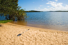 Paddel på stranden av sjön Nhambavale i Mocambique Royaltyfri Fotografi