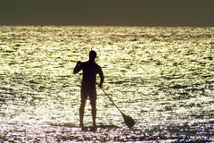 Paddel-Vorstand in Sunlit Wasser Stockfotos