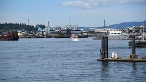 Paddelgeschäftemacherboot stock video footage