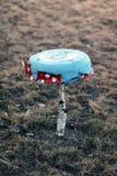 Paddestoel van cirkelplaat en berk wordt gemaakt die Royalty-vrije Stock Afbeeldingen