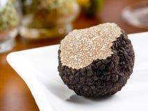 Paddestoel van truffel Stock Foto