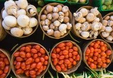 Paddestoelen en Tomaten Stock Foto