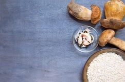 Paddestoelenboleet met specerij en rijst stock fotografie