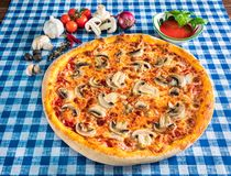 Paddestoelpizza met kaas stock fotografie