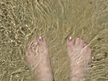 Paddla på stranden Fotografering för Bildbyråer