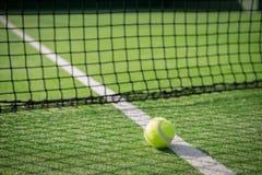 Paddla tennisbanan och förtjäna med en boll på den netto skuggan Arkivbilder