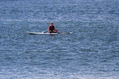 Paddle barding in the pacific royalty free stock photography