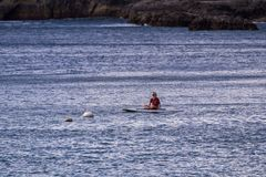 Paddle barding in the pacific royalty free stock image