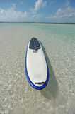 Paddle board in blue water Stock Photography