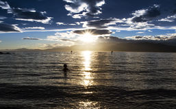 Paddle board Royalty Free Stock Photos