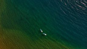 Paddle board in the sea royalty free stock photos