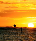 Paddle board sunset Royalty Free Stock Image