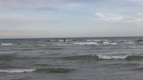Paddle board surfer. stock footage