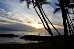 Paddle boarder at sunset, Maui, Hawaii Royalty Free Stock Photos