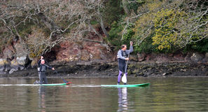 Paddle boarders Royalty Free Stock Images