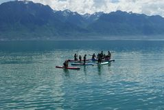 Paddle boarders on Lake Geneva. In summertime royalty free stock photos