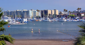Paddle Boarders at Marina Del Rey, Los Angeles, USA. Los Angeles, USA - July 14, 2013: Paddle Boarders practicing at Marina Del Rey, Los Angeles, USA Stock Photos