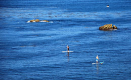 Paddle boarders off Heisler Park, Laguna Beach, California. Image shows paddle boarders off Heisler Park, Laguna Beach, California, This fast gowing sport is stock images