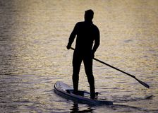 Paddle Boarders. Silhouette images of Paddle Boarders on River Tyne, at Newburn, Newcastle upon Tyne, England, UK. At sunset royalty free stock image