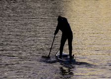 Paddle Boarders. Silhouette images of Paddle Boarders on River Tyne, at Newburn, Newcastle upon Tyne, England, UK. At sunset stock photo