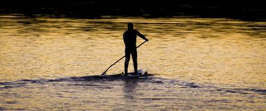 Paddle Boarders. Royalty Free Stock Image
