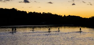 Paddle Boarders. Stock Photography