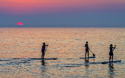 Paddle boarders at sunrise Stock Images