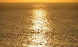 Paddle boarders. Two paddleboarders paddling in the English Channel at sunrise stock photography