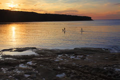 Paddle boarding on Botany Bay at sunrise Royalty Free Stock Image