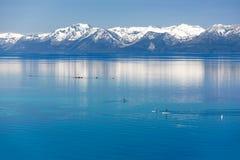 Paddle boarding Lake Tahoe Royalty Free Stock Image