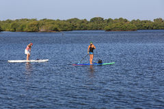 Paddle boarding lesson Stock Image