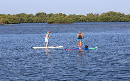 Paddle boarding lesson Stock Photography