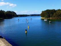 Paddle boarding on Narrabeen lake. Paddle boarding in the summer on Narrabeen lake in Sydney royalty free stock photo
