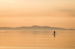 Paddle Boarding at Sunrise. Silhouette of two paddle boarders off the coast of Victoria on Vancouver Island at sun rise Stock Photography