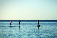 Paddle-boarding. Three men paddle-boarding at Caribbean Sea Stock Image