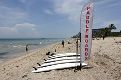 Paddle Boards for Rent with Sign Stock Photos