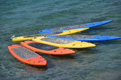 Paddle Boards in the Tropics Royalty Free Stock Images