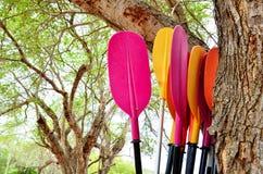 Paddle boats, canoes Stock Image