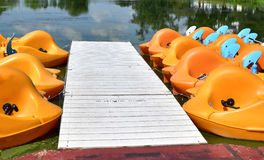 Paddle boats docked in a pond Royalty Free Stock Photo