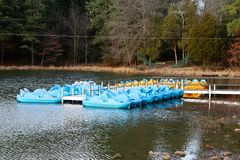 Paddle boats in the recreational area at a lake. Blue and yellow paddle crafts at Shelby Farms park and campground in Memphis, Tennessee Royalty Free Stock Photos