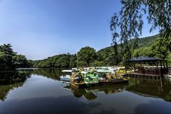 Paddle boats Waiting for the Summer royalty free stock photo