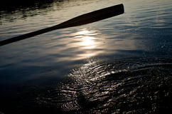 Paddle on a lake Stock Photography
