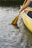 Paddle in Motion Royalty Free Stock Images